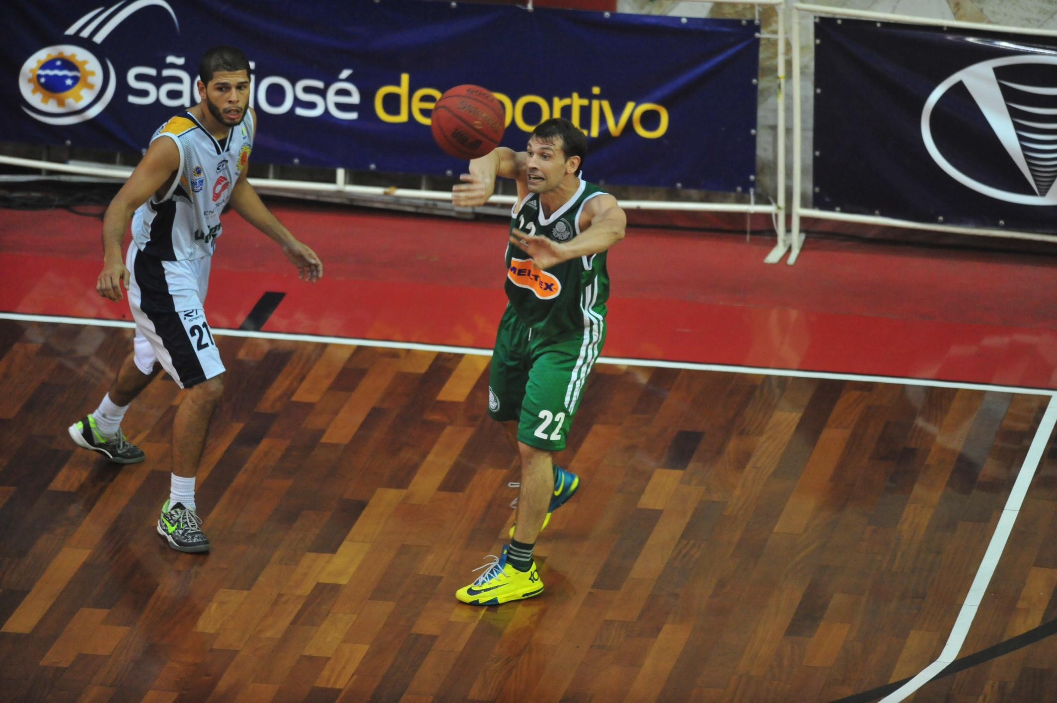 Stanic, do Palmeiras