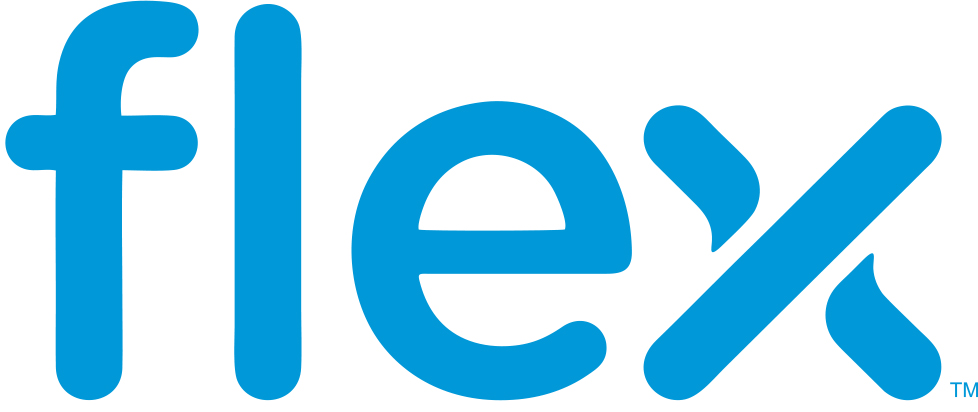 logo_flex_lsb_site-lnb